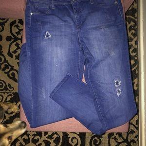 Ashley Stewart Jeans - Ashley Stewart Soft Stretch Jeans